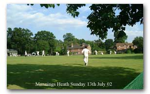 Mannings Heath Cricket - Click to enlarge